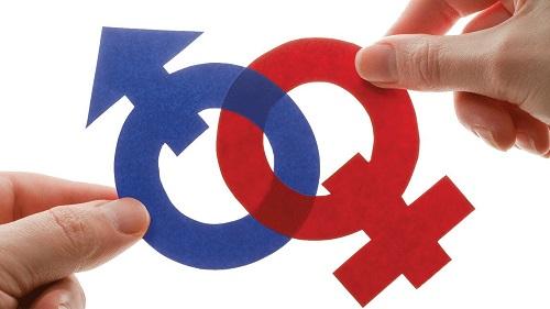Lei que proíbe ensino sobre gênero e orientação sexual é suspensa
